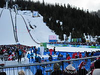 At 2010 Winter Games.jpg