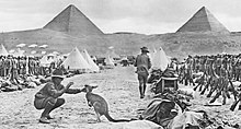 A soldier playing with a kangaroo, while in the middle distance other soldiers are formed up in ranks in front of a number of tents. Two large pyramids are partially obscured by a large hill in the background.