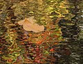 Autumn reflections, October 2016--Warren Bielenberg (28353798289).jpg