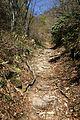 Awagara-goe Trail in Shiga prefecture.jpg