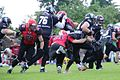 BLACK SHARKS vs. Hannover Stampeder 2016.jpg