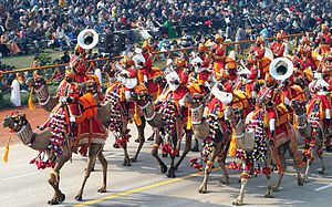 Border Security Force - The unique BSF Camel Contingent during the annual Republic Day Parade.