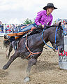 Barrel racing (14583688617).jpg