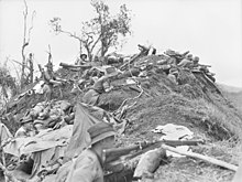 Soldiers wearing slouch hats dug in along a ridge