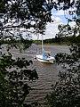 Beaulieu River from the riverside walk - geograph.org.uk - 176818.jpg