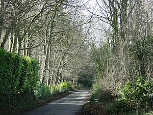 Box Hill, Wiltshire - Image: Beech Road, Box Hill geograph.org.uk 703538