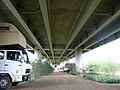 Beneath Postwick Viaduct - geograph.org.uk - 164679.jpg