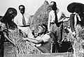 Benito Mussolini threshing wheat 01.jpg