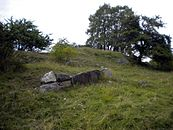 Beorn at the Mound's alleged tumulus 2009 Hovgården Ekerö (2).jpg