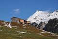 Berngat Berggut 68 in Au .JPG