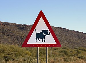 English: Beware of warthogs road sign near Wat...