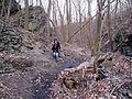 Bezejmenný potok mezi Bohnicemi a Podhořím a jeho okolí (09).jpg