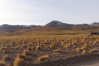 El Tatio - Landscape of the El Tatio region