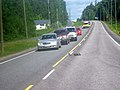 Birds crossing Main Road 24.jpg