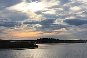 Blackwater National Wildlife Refuge - Image: Blackwater wildlife drive