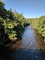 Blackwater Falls State Park WV 22.jpg