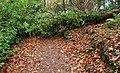 Blocked path, Clare Glen, Tanderagee - geograph.org.uk - 1590501.jpg
