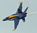 Blue Angel creating a vapor trail in a tight turn (5232228403).jpg