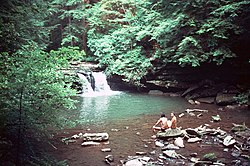 Blue Hole, Tracy City, Tennessee.jpg