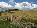 Border fence and Eccles Cairn - geograph.org.uk - 1438488.jpg