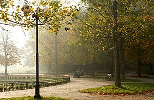 Borisova gradina autumn