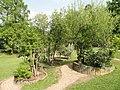 Botanischer Garten Freiburg - DSC06399.jpg
