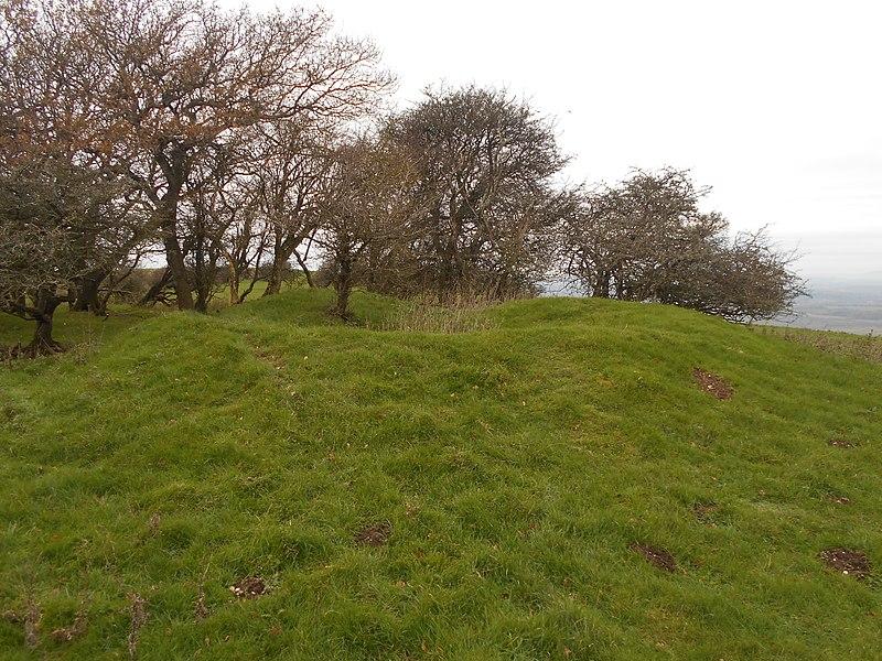 File:Bowl Barrow on Springhead Hill, Parham, West Sussex 02.jpg