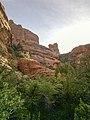 Boynton Canyon Trail, Sedona, Arizona - panoramio (21).jpg