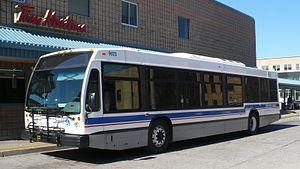 Brantford Transit - Image: Brantford Transit 9073