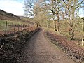 Bridleway between Cilcain and Offa's Dyke Path - geograph.org.uk - 1171795.jpg