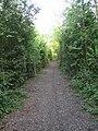 Bridleway near Calvert - geograph.org.uk - 499249.jpg