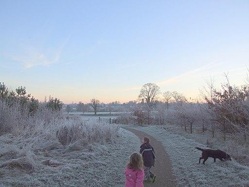 Brocks hill - panoramio