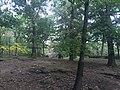 Bronx Zoo - New York - USA - panoramio (13).jpg