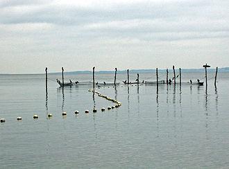 Bay of Aarhus - Image: Bundgarn 2