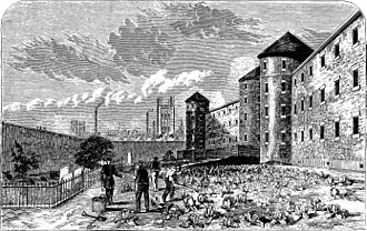 Millbank Prison - The prison's burial ground, with the Houses of Parliament in the background. The image was published in 1862.