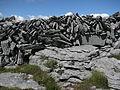 Burren 2008-07-03 15-07.jpg