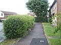 Bush between pavement and path in Sywell Crescent - geograph.org.uk - 855078.jpg