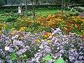 Byrant,s Park,Kodaikanal,tamilnadu - panoramio.jpg