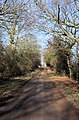Byway to Culfordheath - geograph.org.uk - 1129552.jpg