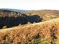 Calder Burn Gorge and Druim Laragan - geograph.org.uk - 1033972.jpg