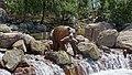 Calico River Rapids 7.jpg