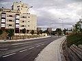 Calle de Eduardo Barreiros - panoramio.jpg