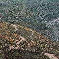 Caminhos no Parque Natural do Alvão.jpg