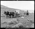 Camping near Scofield, Utah.jpg