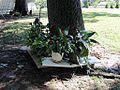 Cane Creek MB Church Cemetery Bellevue Blvd Memphis TN 008.jpg