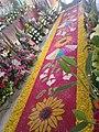 Carpet in San Marcos Contla, Tlaxcala.jpg