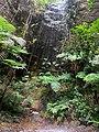 Cascada por Santiago de Chiquitos.jpg