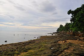Catmon Cebu beach.jpg