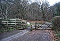 Cattle Grid west of West Luccombe - geograph.org.uk - 1660569.jpg