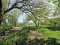 Central Park May 2019 68.jpg
